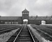 'Auschwitz', para entender cómo un lugar así pudo llegar a existir