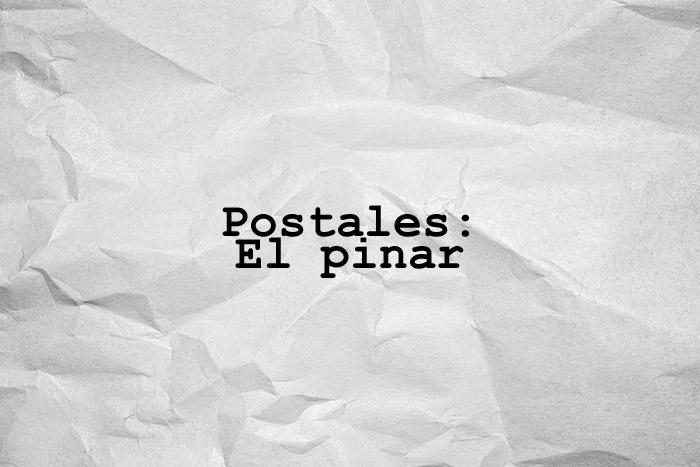 Postales: El pinar
