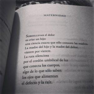 Ana Castro poema