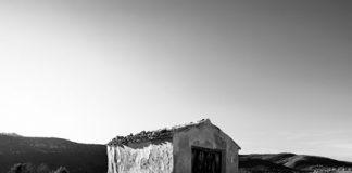 El camino del mundo rural portada
