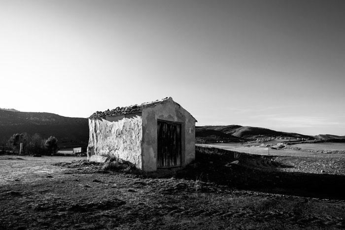El camino del mundo rural
